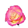 NEW DIRECTIONS AUSTRALIA土耳其玫瑰精油