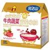 Wondersun牛肉蔬菜营养米粉