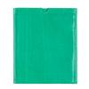 Clare VivieriPad 绿色皮套