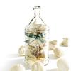 【其他】GRA 贝壳造型香氛皂(9入附大玻璃罐)