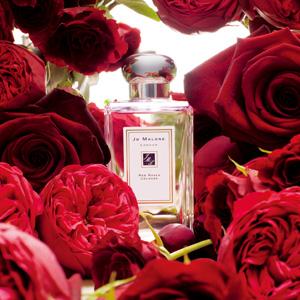 Jo Malone London 红玫瑰香水+杏桃花与蜂蜜香水